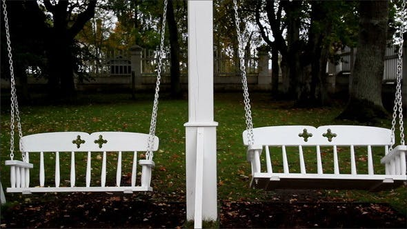 Bench Swings and Trees