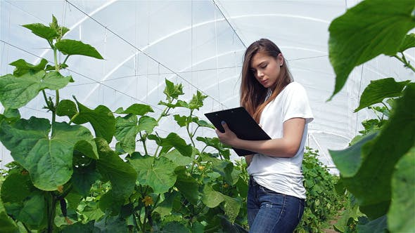 Thumbnail for Young Girl Agronomist Records Observations