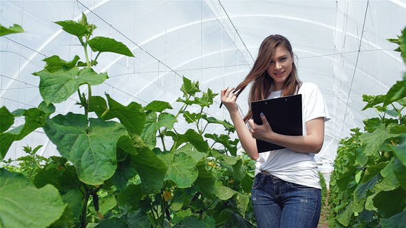 Thumbnail for Girl Agronomist Wrote Then Smiling