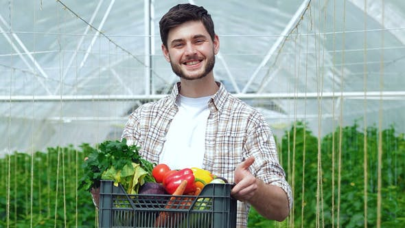 Thumbnail for Drawer Full Of Healthy Vegetables