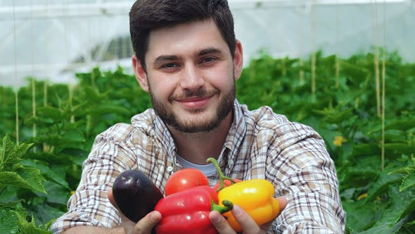 Thumbnail for Guy Demonstrates The Organic Vegetables