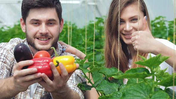 Thumbnail for Young Agronomists Monitor The Harvest