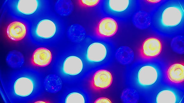 Konzert Lichtshow