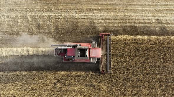 Thumbnail for Drone Flies Over Red Harvester Machine Cut Wheat Crop in Rural Yellow Field. Agriculture Food