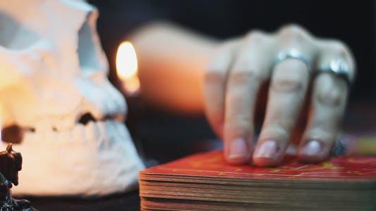 Thumbnail for Woman Lays Tarot Cards