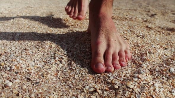 Legs Of Man Are On Seashells On a Sandy Beach On