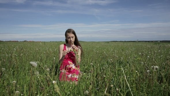 Thumbnail for Teen Girl Making a Wreath On The Meadow