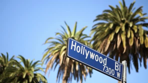 Thumbnail for Hollywood Blvd.