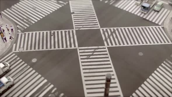 Thumbnail for Shibuya Crossing, Time Lapse