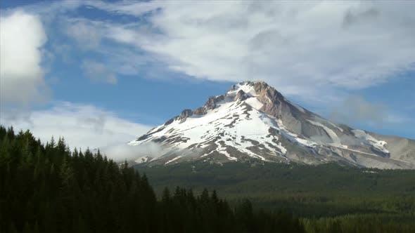 Mount Hood im Sommer 1