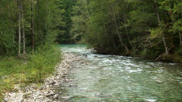 Thumbnail for Goodell Creek Merging Into The Skagit River 1
