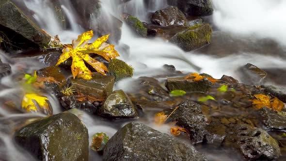 Thumbnail for Time Lapse, Rushing Water 2