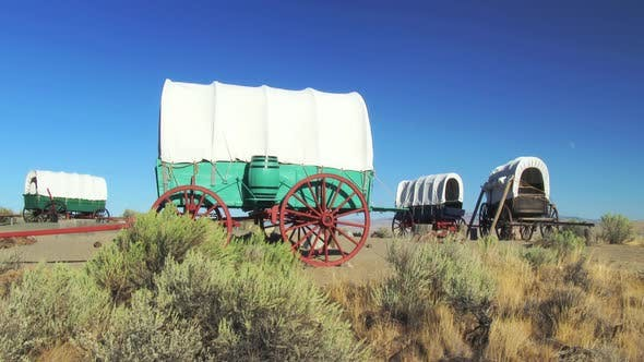 Covered Wagon Train Circled In Camp