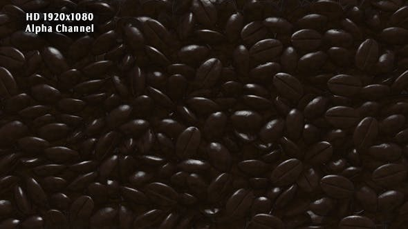 Rain Coffee Beans Transition