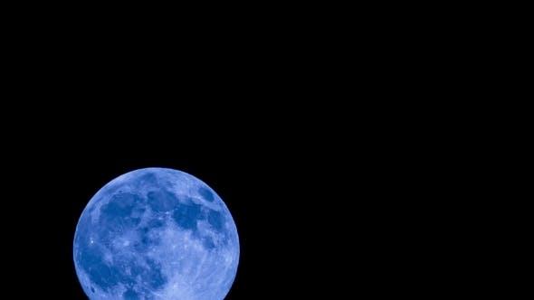 Big Full Moon Rising In The Sky