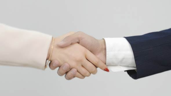 Cover Image for Business Hand Shake, Welcoming Partner