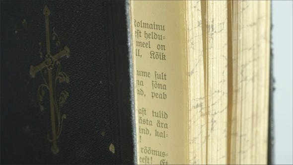 The Side Details of the Bible