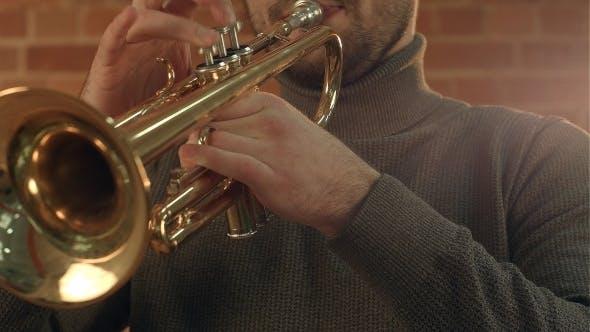 Thumbnail for Hände eines Musikers spielt die Trompete