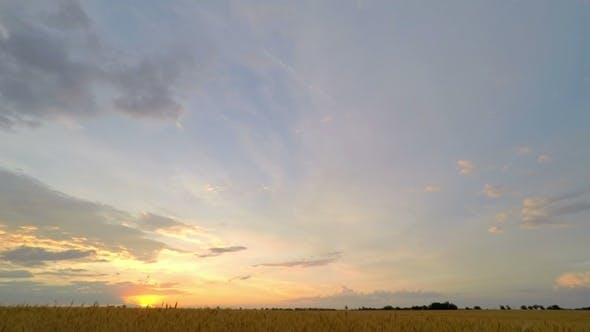 Thumbnail for Sunset Sky Clouds over a Wheat Field