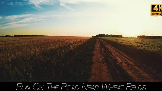 Cover Image for Run On The Road Near Wheat Fields