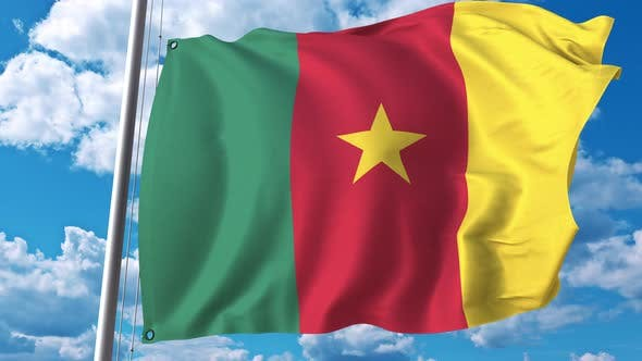 Thumbnail for National Flag of Cameroon on Sky Background