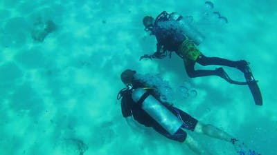 Scuba Diving at Coral Reef Bottom to View Coral Fish Tourists Dive Zanzibar