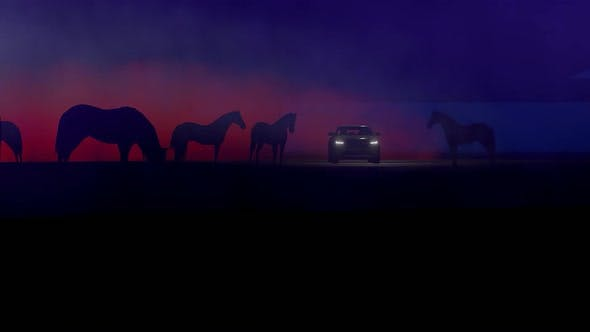 Thumbnail for Foggy Horses and SUV