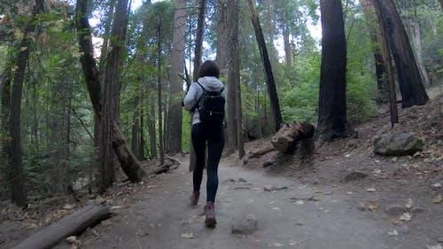 Junges Mädchen läuft in einem Wald im Yosemite National Park, USA