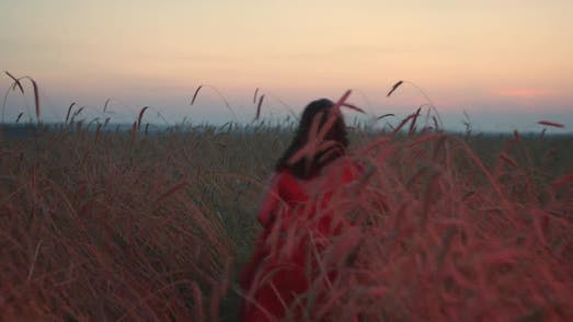 A Girl in a Red Dress is Walking Through a Field at Sunset