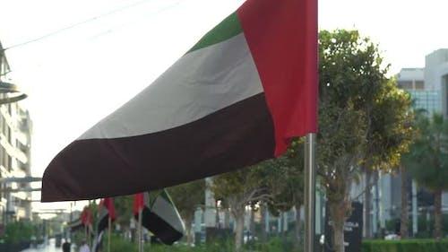 UAE Flags on the Street