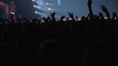 Dancing Crowd with Hands Up at the Music Festival