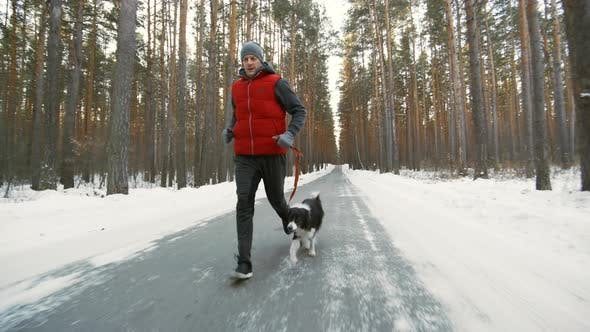 Thumbnail for Man and Dog Training on Forest Road
