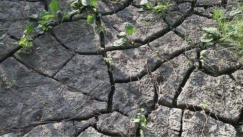 Der Boden von Dürre zerbrochen