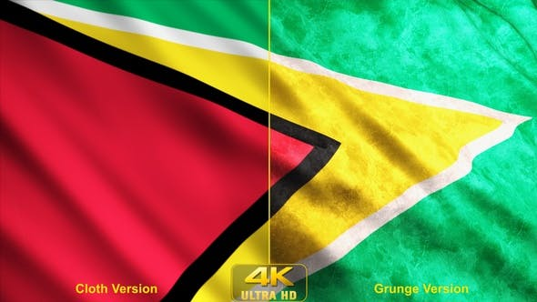 Thumbnail for Guyana Flags