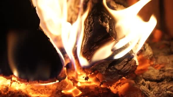 Thumbnail for Flames And Fiery Coals (3 Of 8)