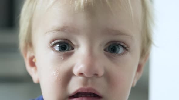 Thumbnail for Scenes Of A Boy Crying (3 Of 6)