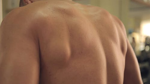 Bodybuilder im Fitness-Studio