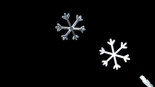 Thumbnail for Snow Flakes