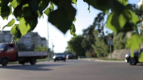 Cars at a Crossroads