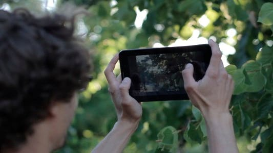Thumbnail for Man Photographing Nature In The Tablet