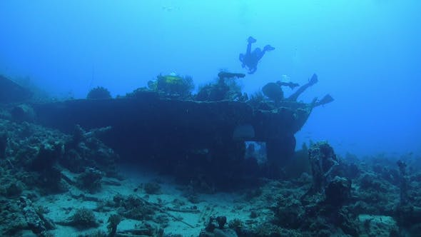 Thumbnail for Group of Divers Swims over Ship Wreck