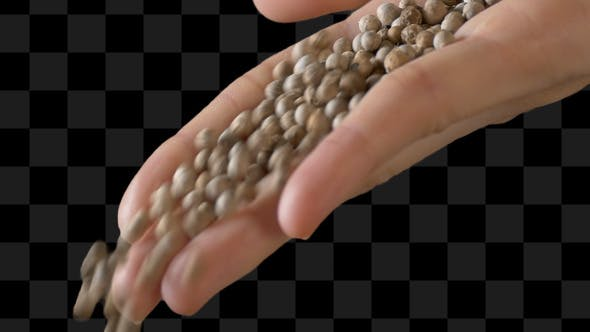 Thumbnail for Hand Of Woman Pouring Pepper