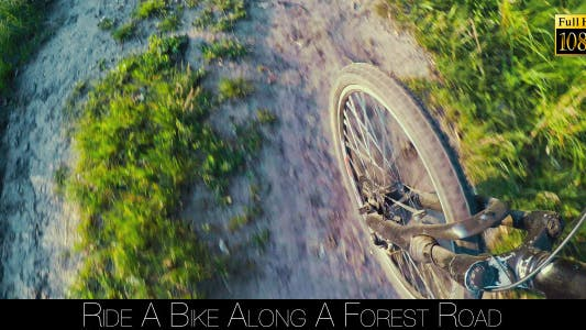 Cover Image for Ride A Bike Along A Forest Road