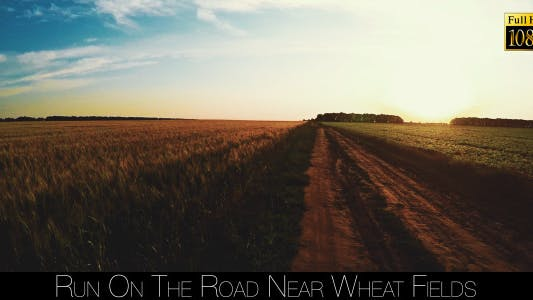 Thumbnail for Run On The Road Near Wheat Fields