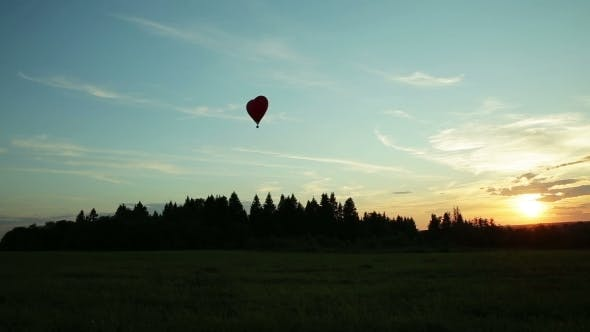 Thumbnail for Hot Air Balloons Flying Over Trees Sunset