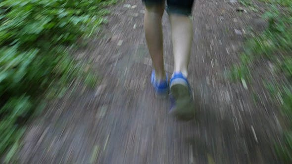 Thumbnail for Male Trail Runner Running In The Forest On A Trail