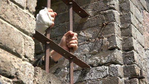 Thumbnail for Prisoner of War