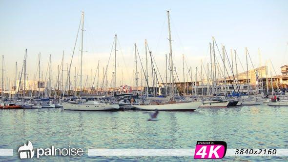 Thumbnail for Port Boats