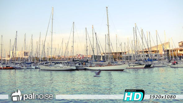 Thumbnail for Port Leisure Ships Sailing & Boats
