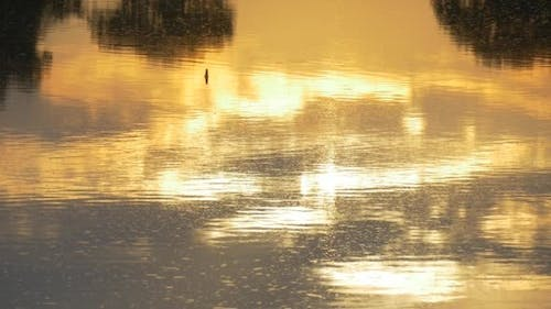 Floating Rippling Water with Yellow Sunset